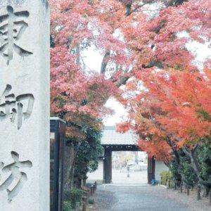 higashigobou003