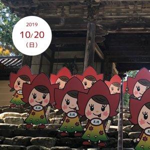 201910-20-momijichan01