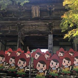 201910-20-momijichan09