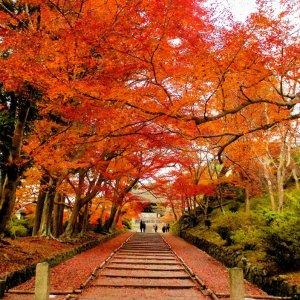 northtokubetsukokai01