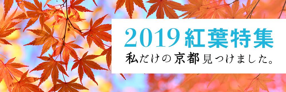 2019紅葉特集