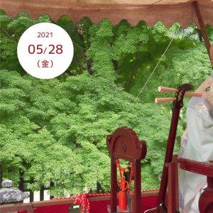 202105-28-jyurinji-narihiraki01