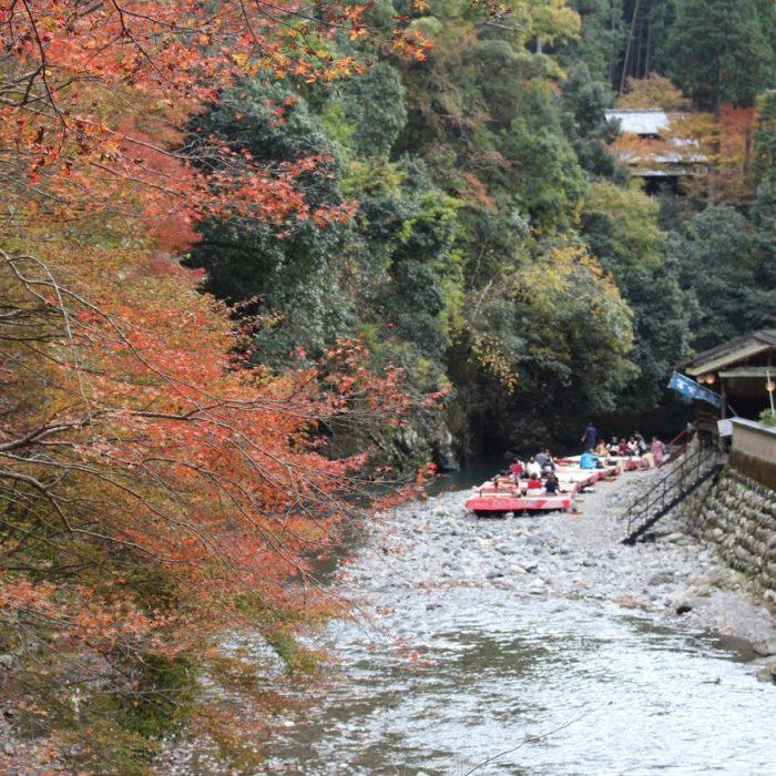 shingojikawadoko01